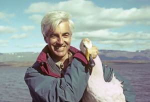Andrew Cooper and whooper swan Iceland 1