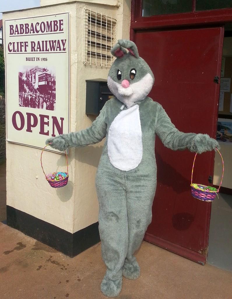 Babbacombe Bunny